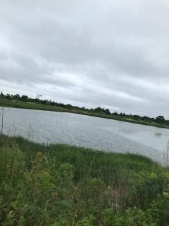 Sunken Meadow July 7 (4)